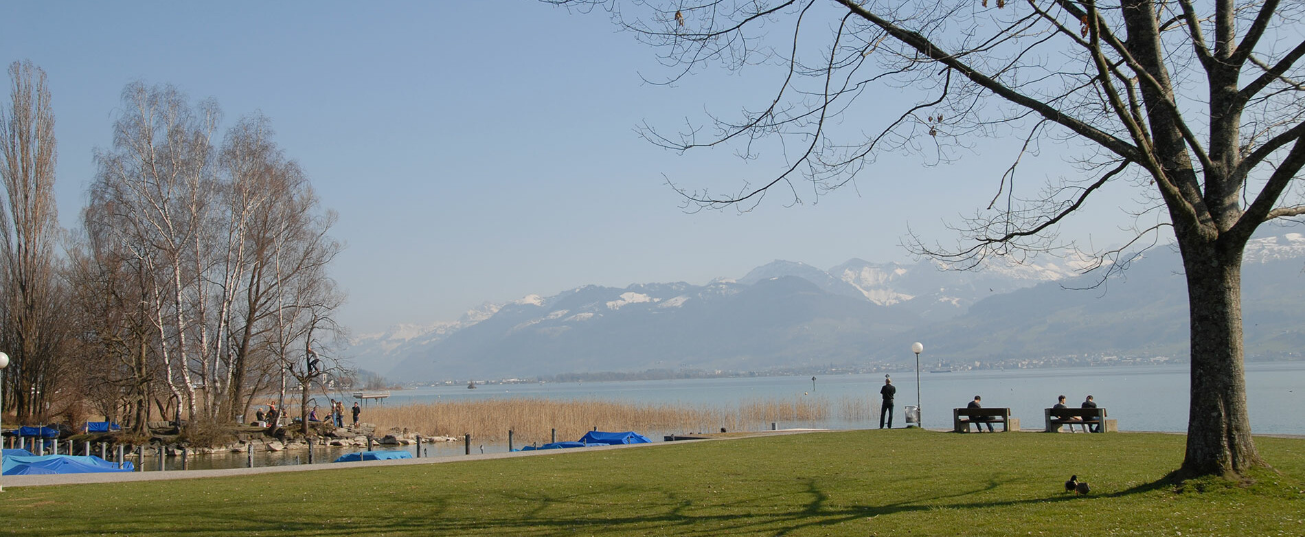 [Translate to English:] Der Campus Rapperswil liegt direkt am Zürichsee